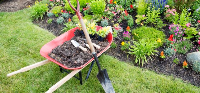 Tips For Saving Money When Landscaping